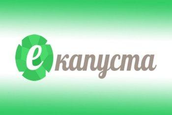 Онлайн займы в МФО «Е-капуста»: все что нужно знать!